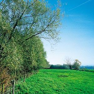 Boucle de Rumes-Tournai