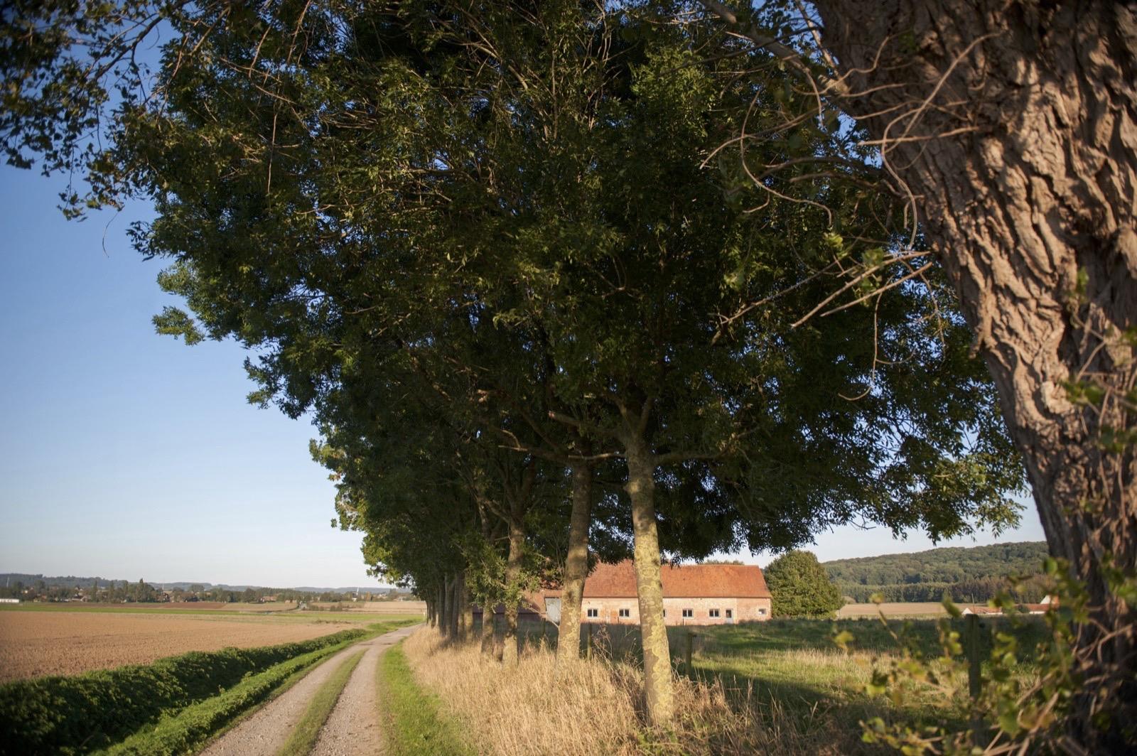 Promenade du Vert bois