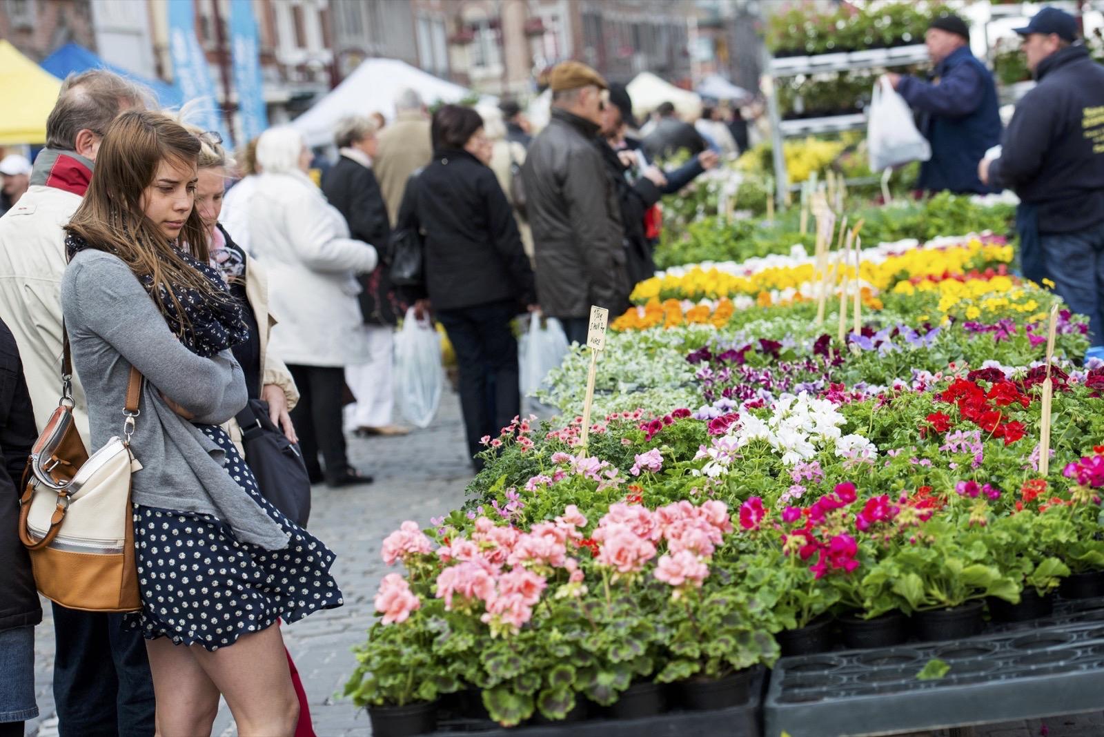 Le marché aux fleurs de Tournai