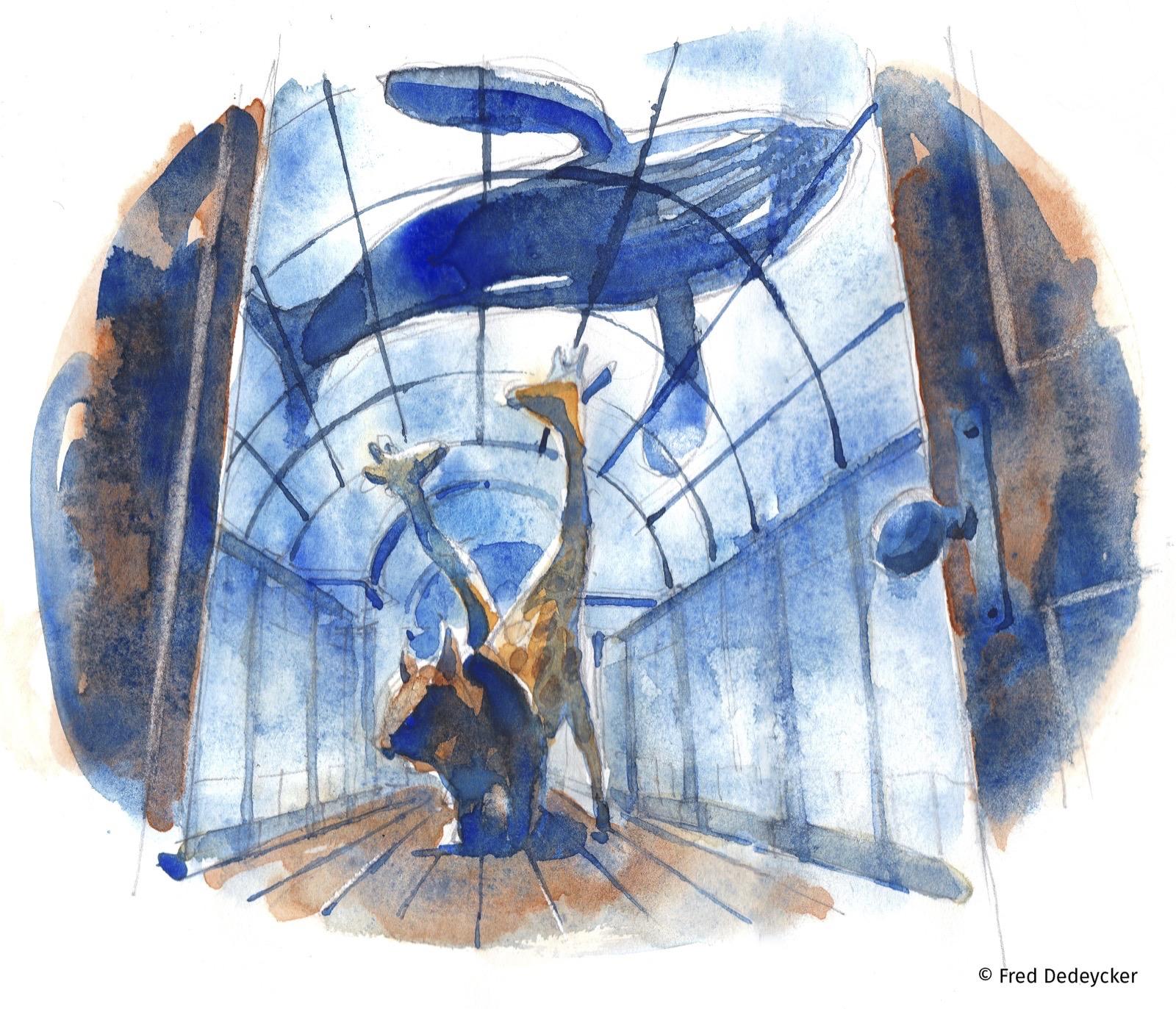 Wapi insolite – La nuit insolite des musées