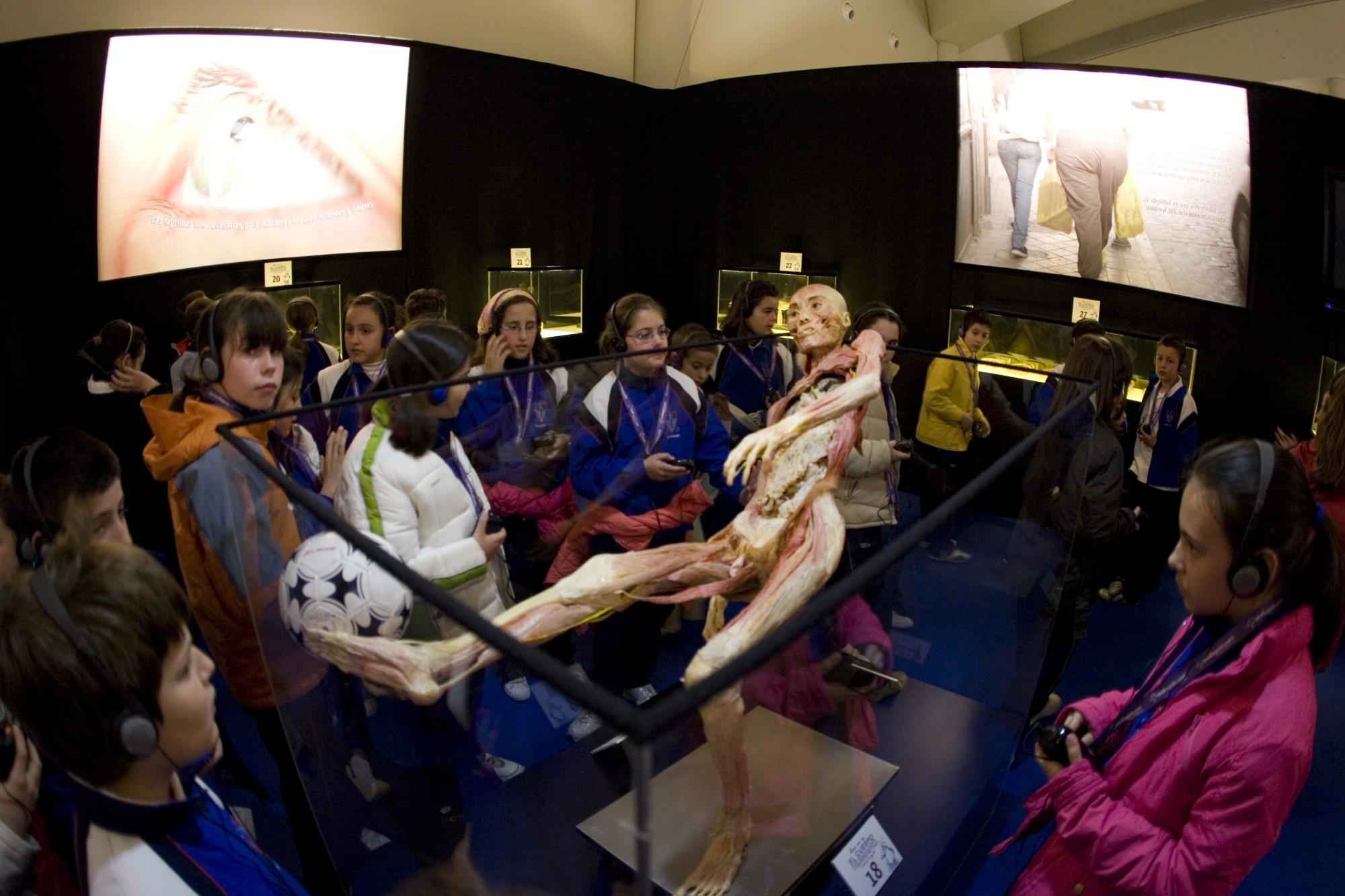 Wapi insolite - Expo : Human Bodies Exhibition