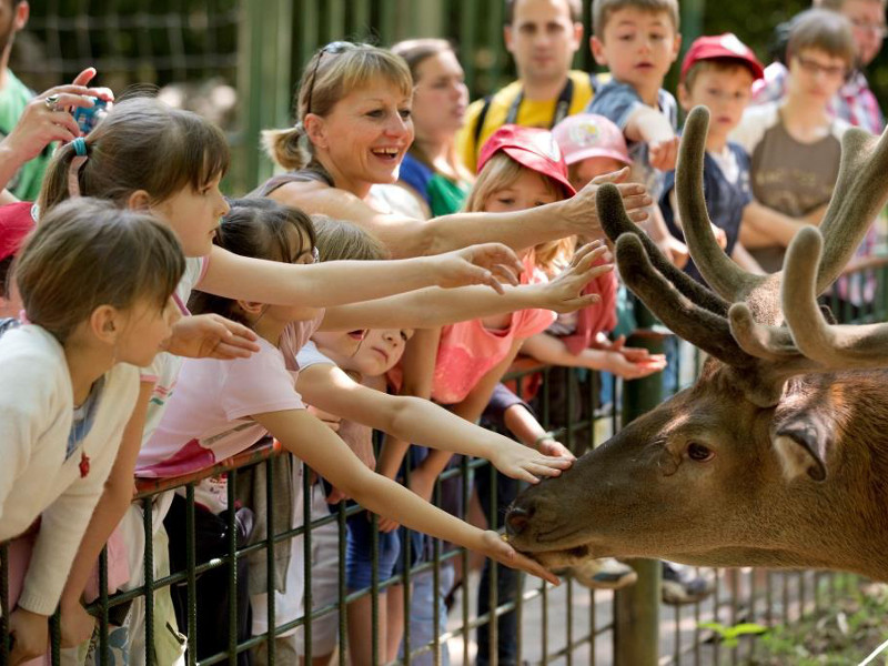 Massembre-parc zoologique02