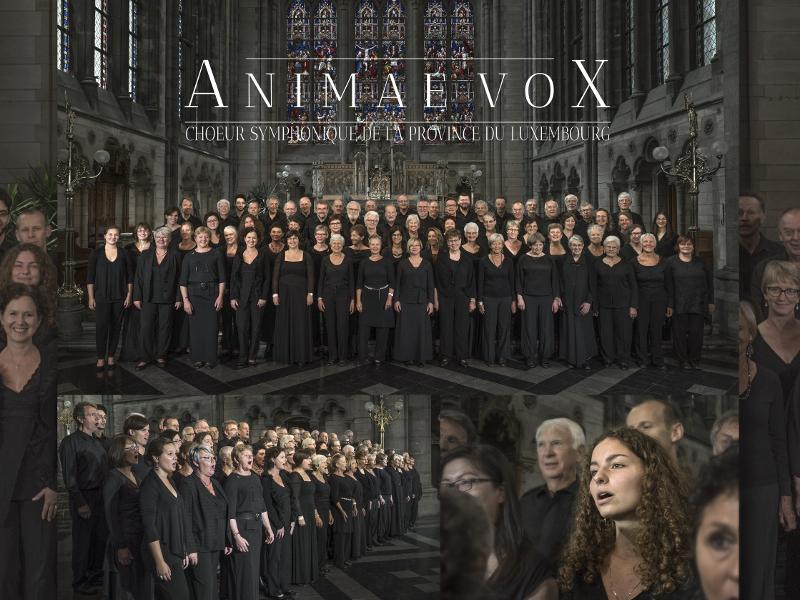 Concert classique : Animae