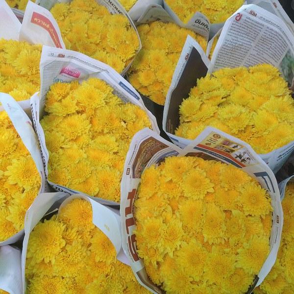 Marchés aux chrysanthèmes