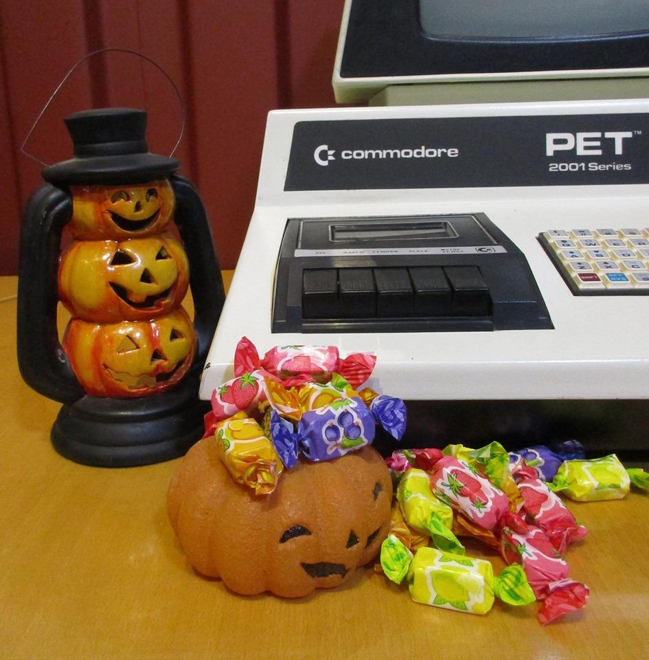 Halloween au NAM-IP : chasse