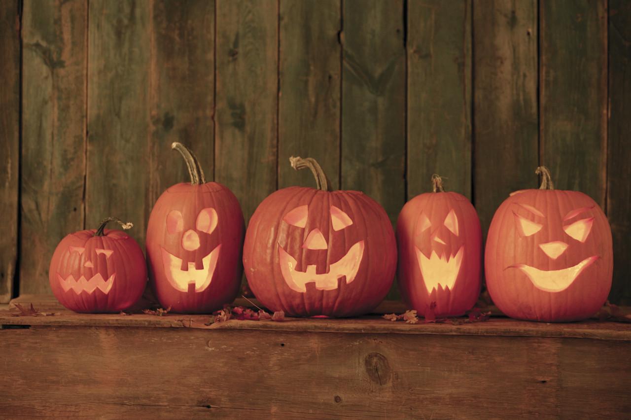 Terrifiante tournée d'Halloween