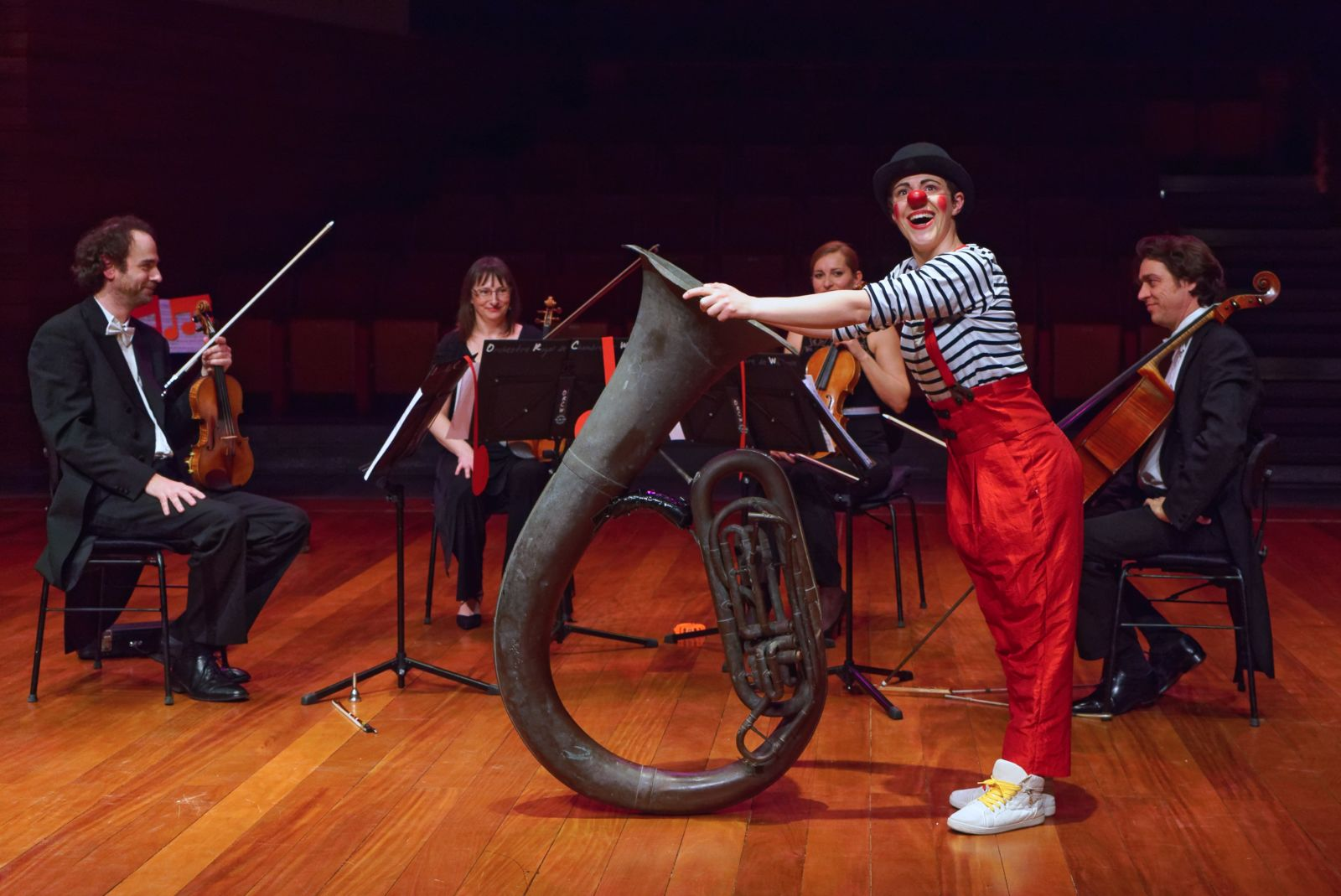 Concert: un clown au pays (...)