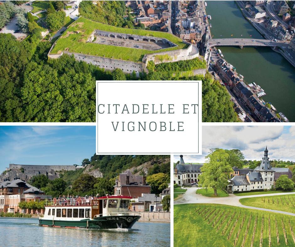 Citadelle et Vignoble