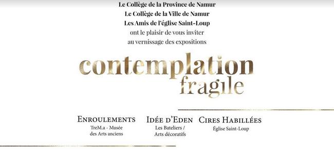 Contemplationfragile