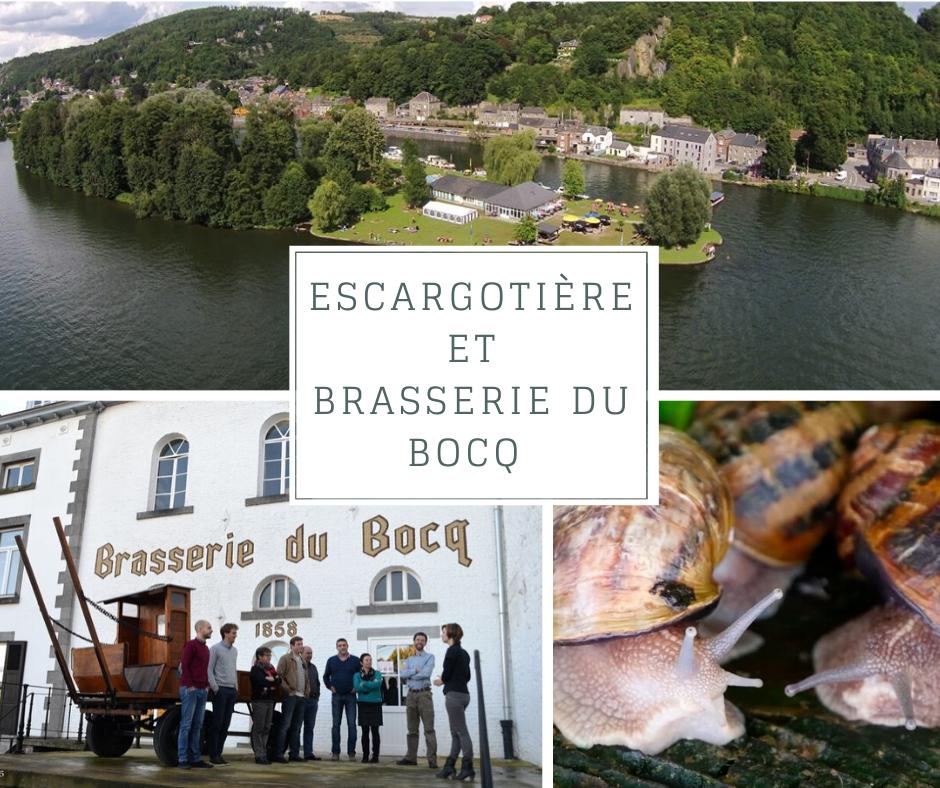 Ile d'Yvoir (Escargotière(...)
