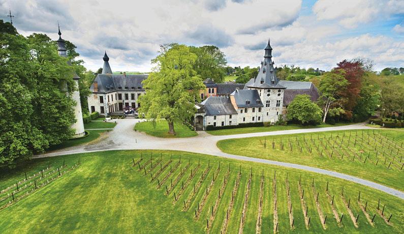 Chateau de Bioul vignobles
